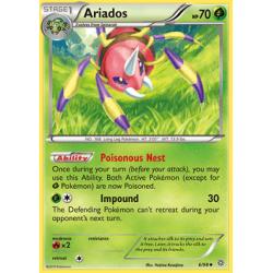 Ariados (AOR)