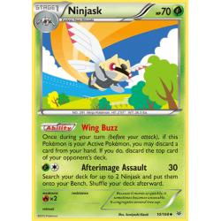 Ninjask (ROS)