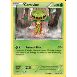 Carnivine (LTR)