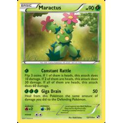 Maractus (BW)